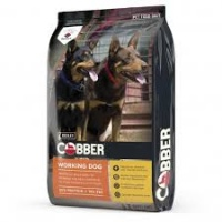 cobber_working_dog