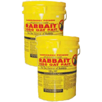 rabbait1080pails