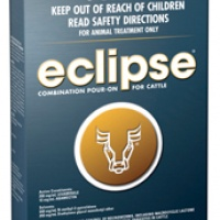 eclipse_5
