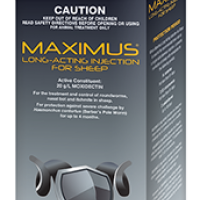 maximus_lai_sheep_500ml